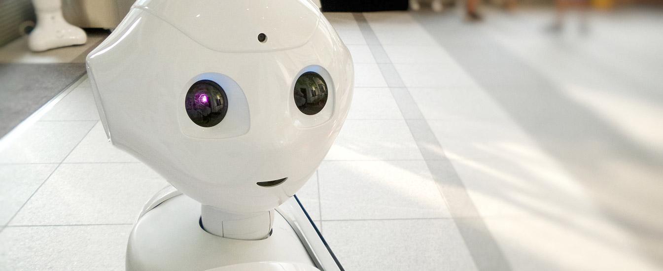 Los bots: el futuro del CRM
