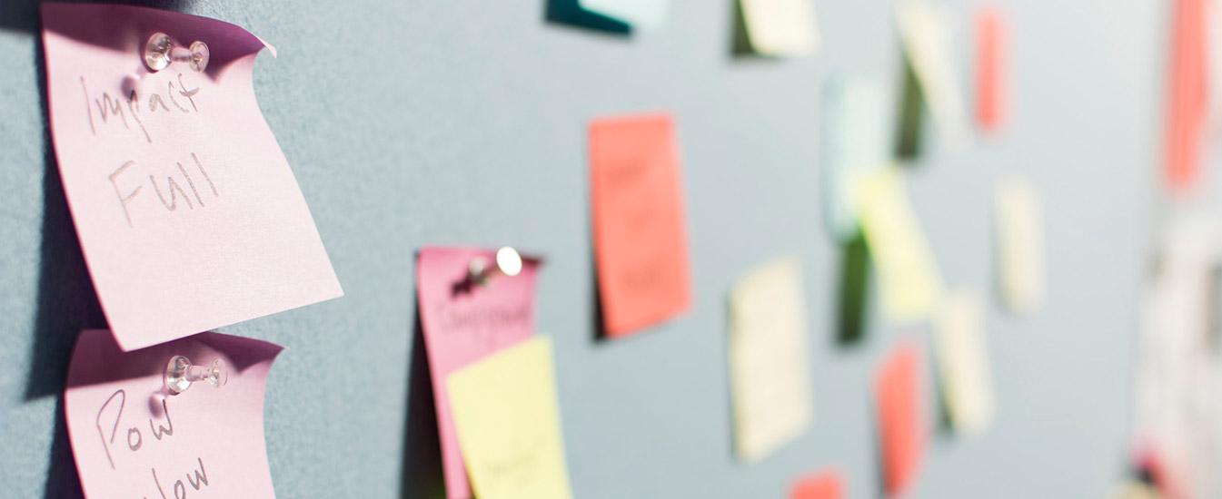 ¿Qué función cumple un ERP project manager?