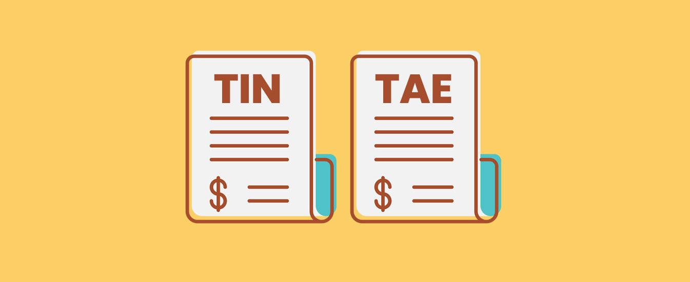 ¿En qué se diferencian TIN y TAE?